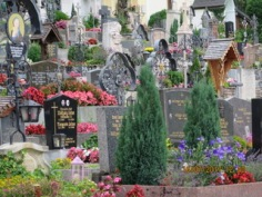 an obsession with the cemetery
