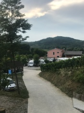 Camp site in Vipava valley, called Saksida