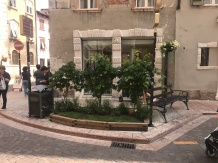 Beautiful little gardens all over Trento