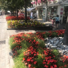 Boulevards of flowers in Merano