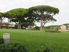 Admiring the greens at Vale Do Lobo clubhouse