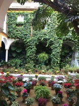 Hidden garden in Seville