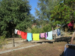 My lovely washing line