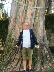 Chris next to a very big tree, Coimbra