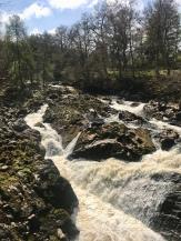 River Dee in Banchory