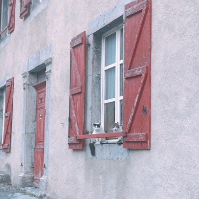 cats in the windows - Vignec, France