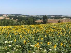 Lot-en-Garonne , France