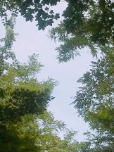 """""""Les Jardins de l'Imaginaire""""."""