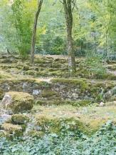 """The moss garden at """"Les Jardins de l'Imaginaire""""."""